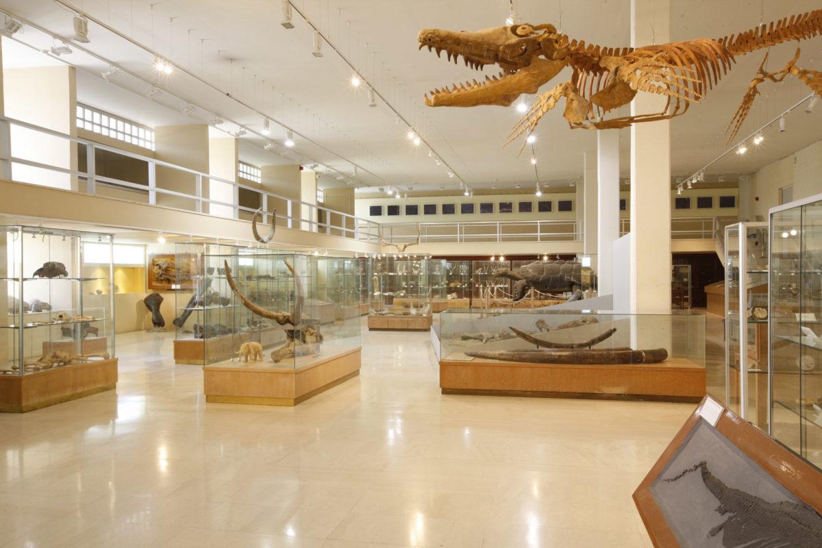 Γενική άποψη του Μουσείου Παλαιοντολογίας και Γεωλογίας (φωτ.: ΑΠΕ-ΜΠΕ / Βασίλης Καρακίτσιος).