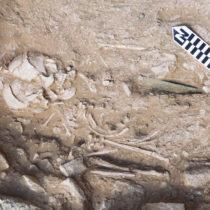 Σημαντικά τα νέα ευρήματα από το νεκροταφείο του Πετρά