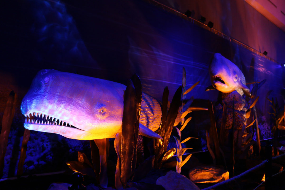 Από την έκθεση «Δεινόσαυροι και τέρατα των θαλασσών» που θα φιλοξενηθεί στον «Ελληνικό Κόσμο».