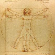 «Ο άνθρωπος του Βιτρούβιου» στο Μουσείο του Λούβρου
