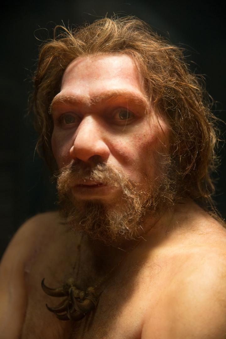 Οι Νεάντερταλ έζησαν για εκατοντάδες χιλιάδες χρόνια στην Ευρώπη και στην Ασία, ώσπου εξαφανίστηκαν πριν από 40.000 χρόνια. Φωτ.: Petr Kratochvil (CC0).