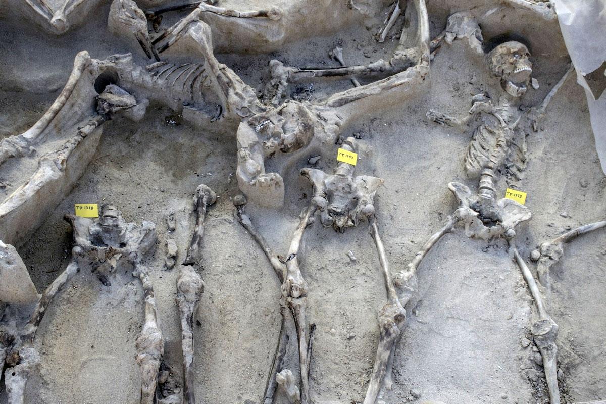 Λ. Μενδώνη: Εγκαταλείφθηκαν στην τύχη τους οι Δεσμώτες του Φαλήρου