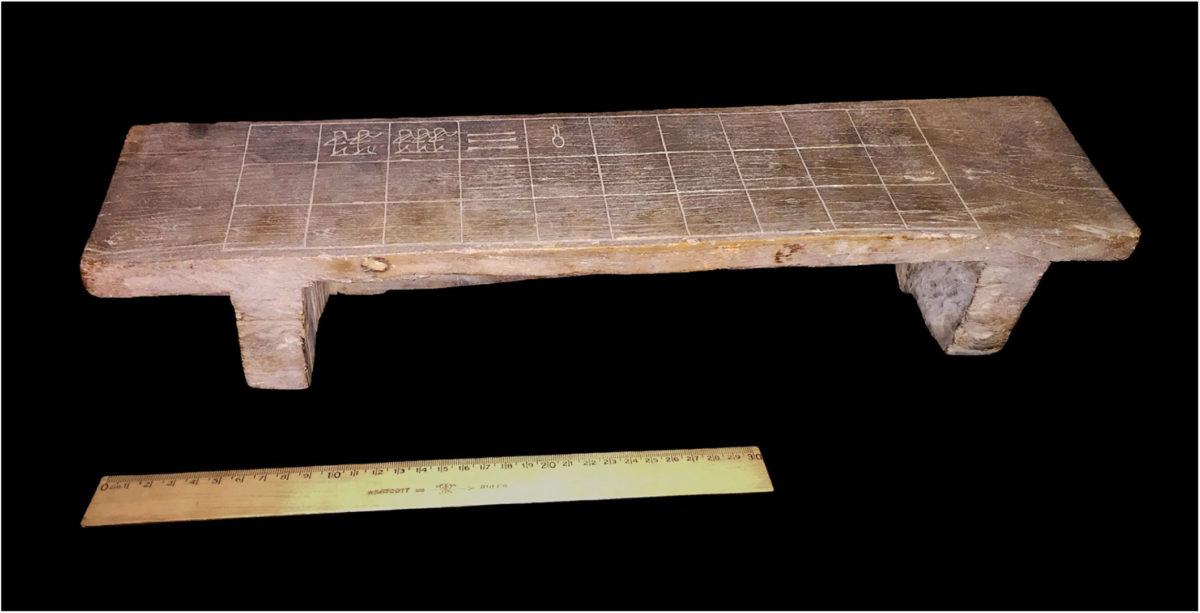 Ανακαλύφθηκε «χαμένος κρίκος» στην εξέλιξη του σενέτ