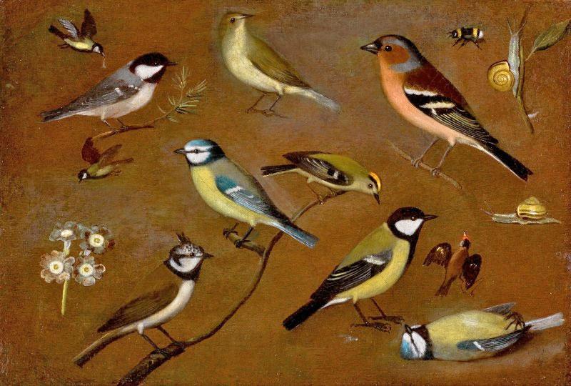 «Νεκρή φύση με πουλιά», ελαιογραφία της μοναχής Orsola Maddalena Caccia (φωτ.: Sotheby's).