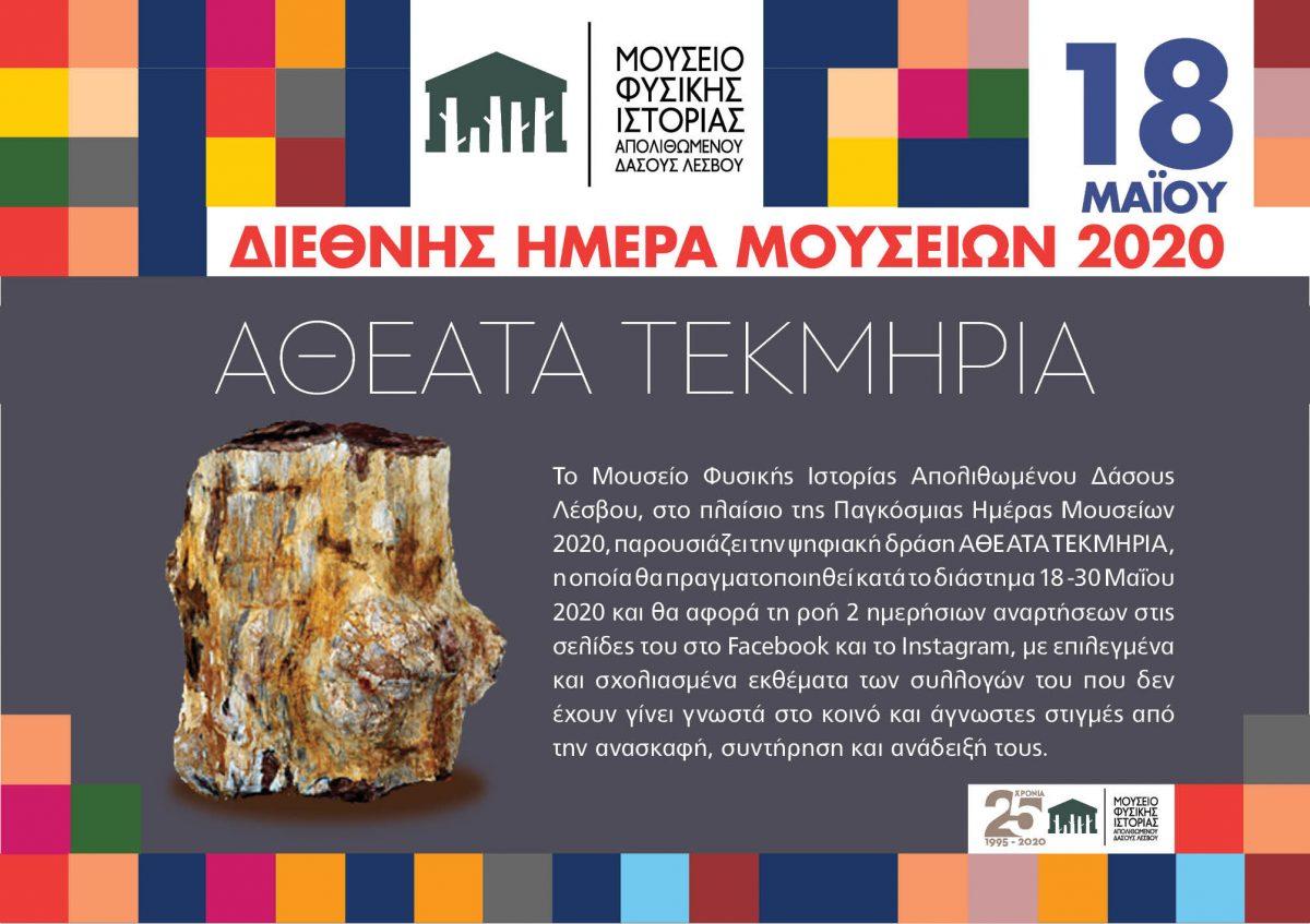 «Αθέατα τεκμήρια» από το Μουσείο Φυσικής Ιστορίας Απολιθωμένου Δάσους Λέσβου