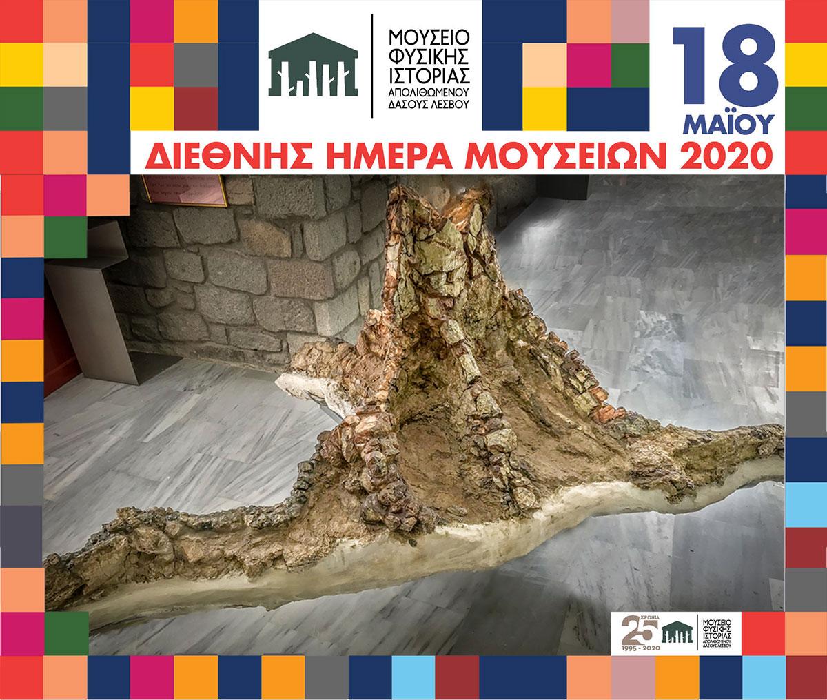 Ένας απολιθωμένος κορμός ηλικίας 18 εκατομμυρίων ετών