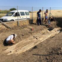 Γιγάντιος κορμός απολιθωμένου δέντρου βρέθηκε στη Λήμνο