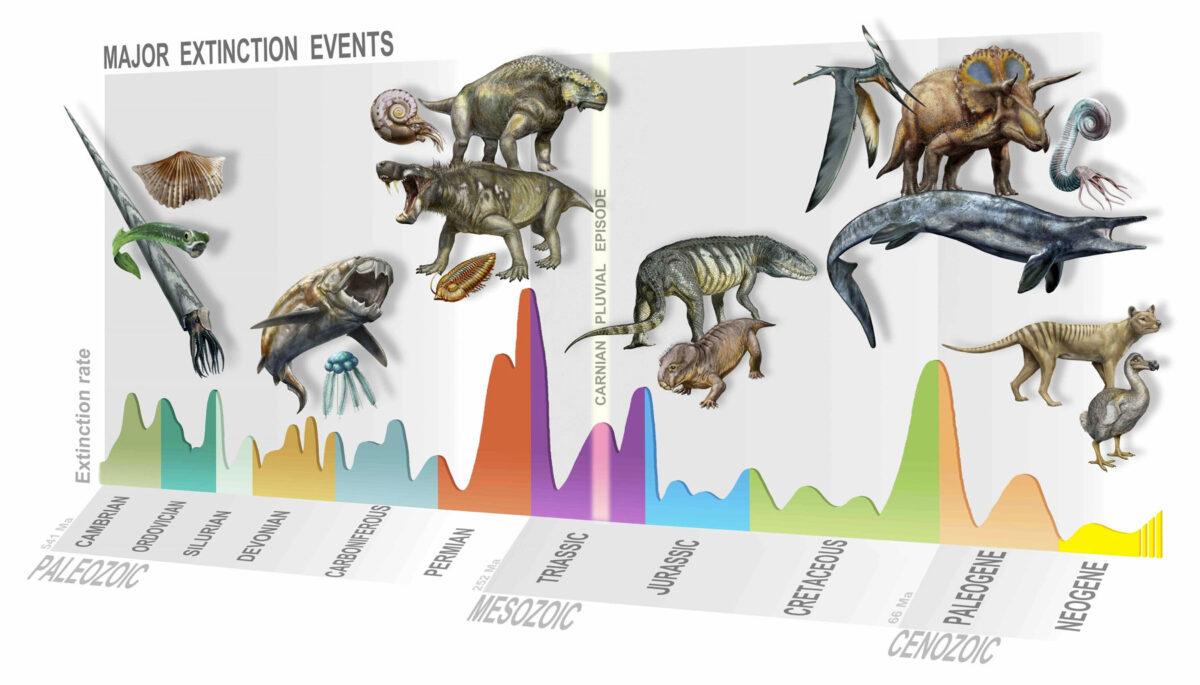 Ανακαλύφθηκε μια άγνωστη έως τώρα μαζική εξαφάνιση των ειδών στη Γη