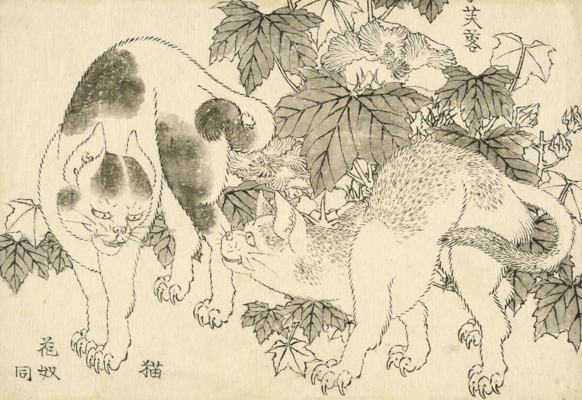 Κατσουσίκα Χοκουσάι, «Γάτες και ιβίσκος», 1829. © The Trustees of the British Museum.