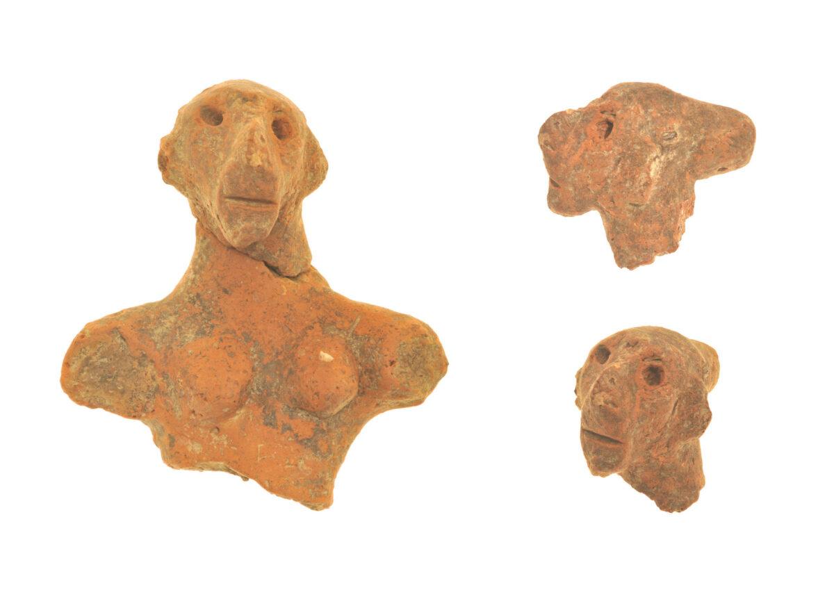 Στο ιερό της Παλαιοανακτορικής περιόδου αποκαλύφθηκαν αποσπασματικά ειδώλια ανθρώπων και ζώων. Μεταξύ αυτών και ένα ωραίο, γυναικείο ειδώλιο, που ονομάστηκε «Κυρά της Ζώμινθος» (φωτ.: ΥΠΠΟΑ).