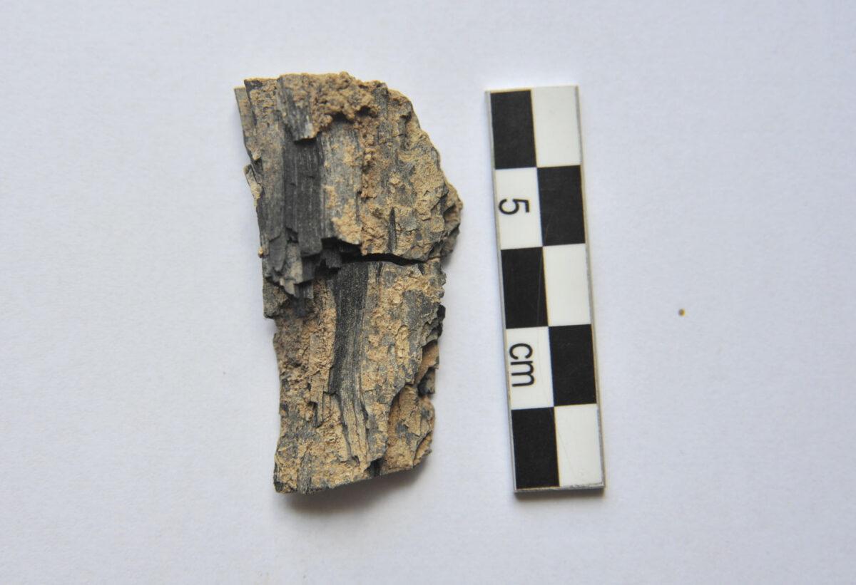 Ζώμινθος: Κάτω από το λίθινο στρώμα του βωμού, βρέθηκε τμήμα καμένου ξύλου, στο οποίο ήταν είτε προσκολλημένα είτε διεσπαρμένα γύρω από αυτό πλήθος από μικρά, χρυσά ελάσματα (φωτ.: ΥΠΠΟΑ).