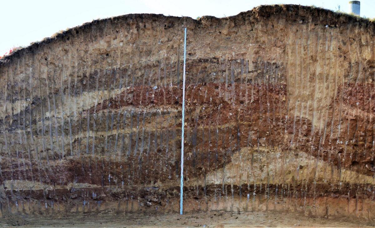 Ταφικός τύμβος Μεσιάς, τομή (φωτ.: ΥΠΠΟΑ).