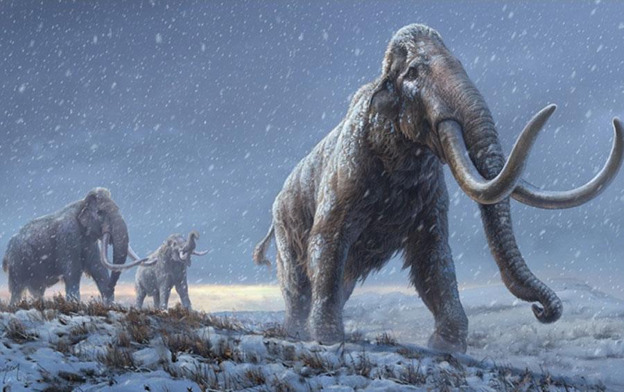 Απομονώθηκε το αρχαιότερο DNA στον κόσμο
