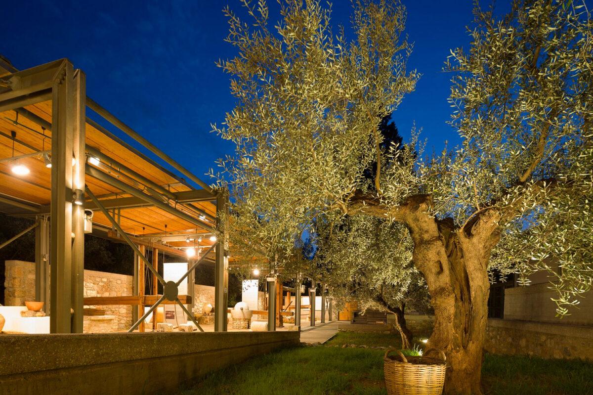 Το Μουσείο Ελιάς και Ελληνικού Λαδιού στη Σπάρτη (φωτ.: ΠΙΟΠ).