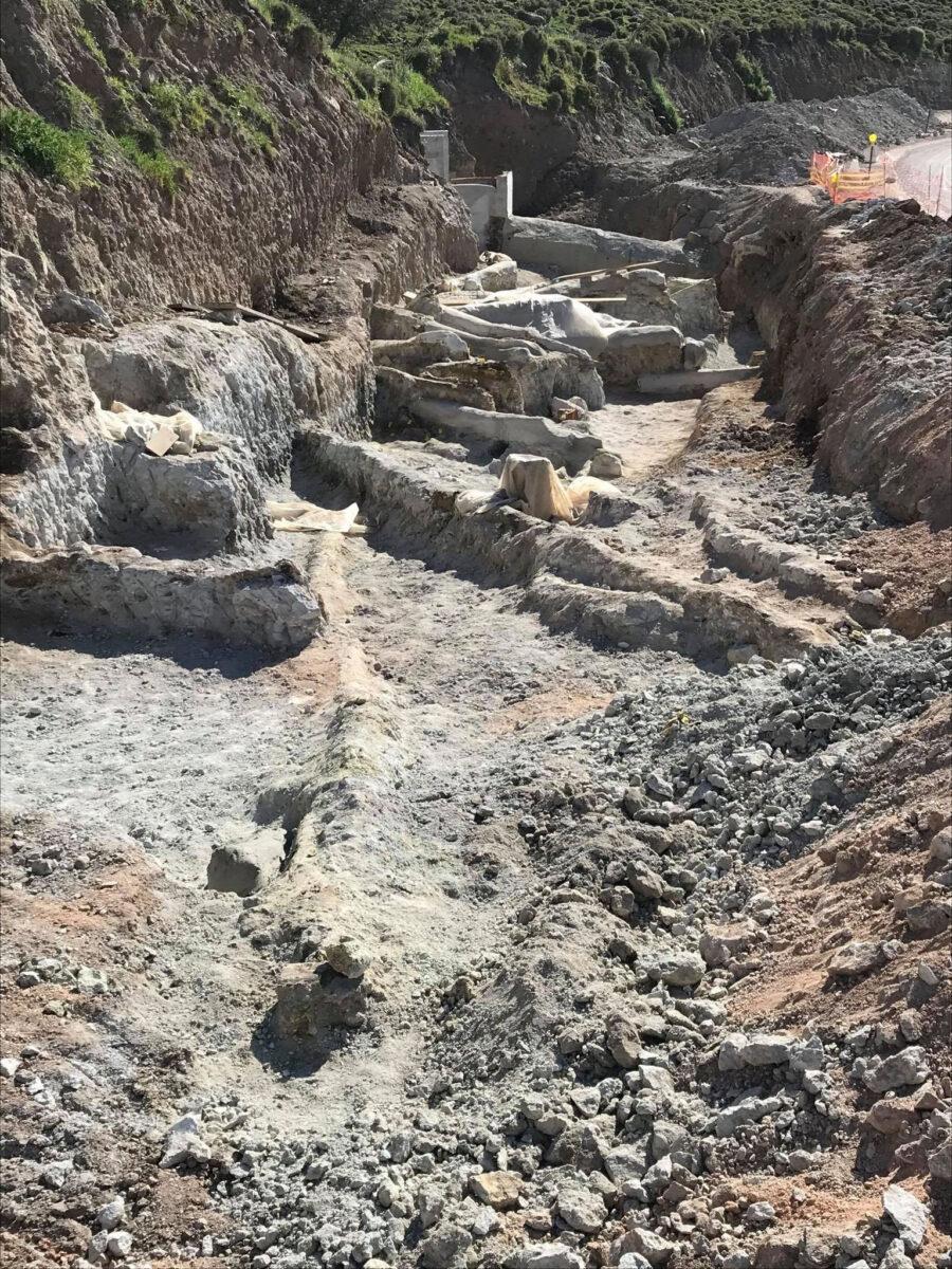 Στιγμιότυπο από τις εργασίες οι οποίες πραγματοποιούνται κατά μήκος του νέου οδικού άξονα Καλλονής-Σιγρίου (φωτ.: Μουσείο Φυσικής Ιστορίας Απολιθωμένου Δάσους Λέσβου).