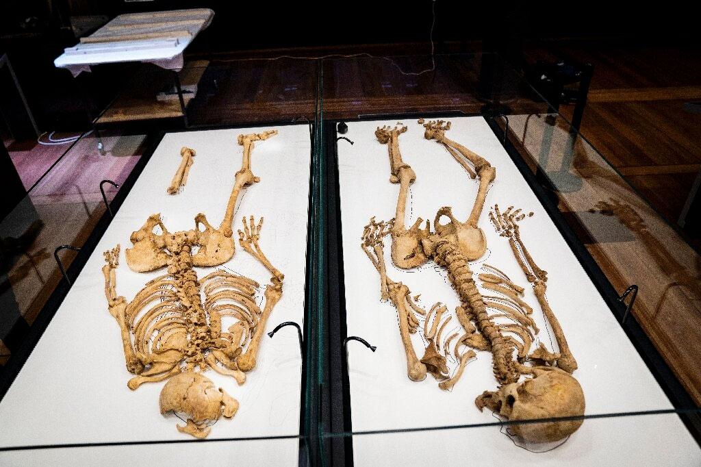 Οι σκελετοί των δύο συγγενών πολεμιστών στο Εθνικό Μουσείο της Δανίας (πηγή εικόνας: phys.org).