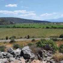 Γενική άποψη της πεδιάδας από την ακρόπολη του Γλα (φωτ.: Ν. Σεπετζόγλου, © Ανασκαφικό Πρόγραμμα Γλα 2018–2022).